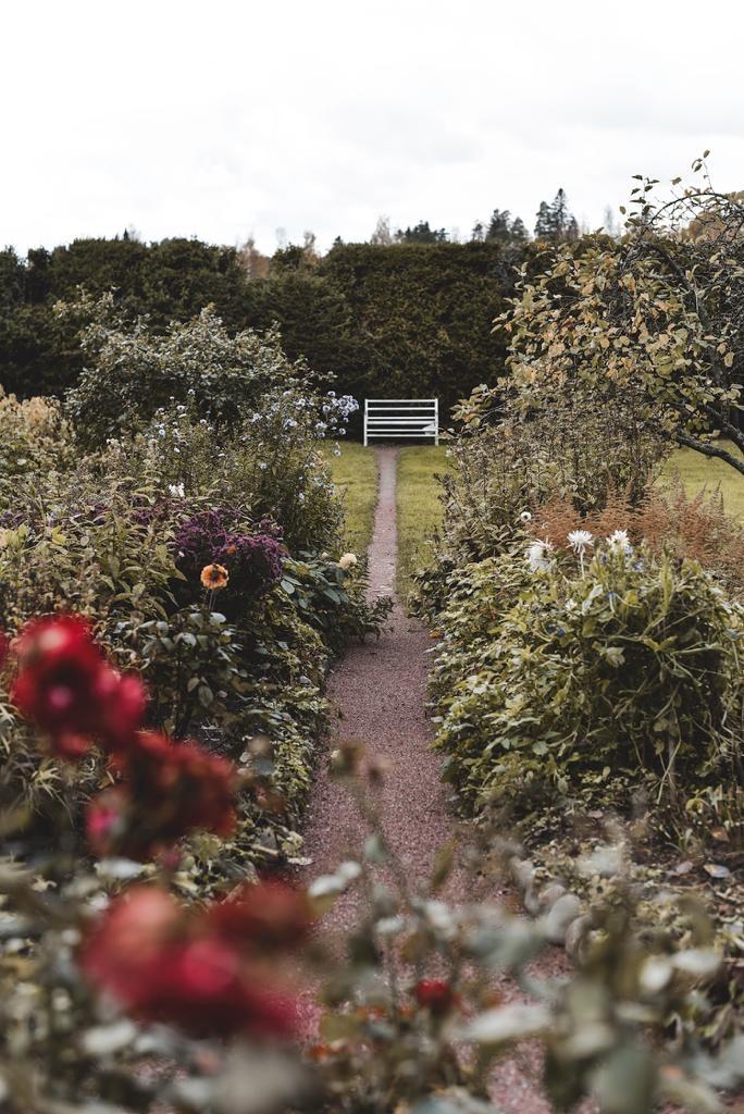 Sibeliuksen puutarha Ainolassa Järvenpäässä.